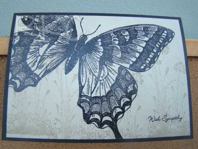 Black Swallowtail Sympathy card